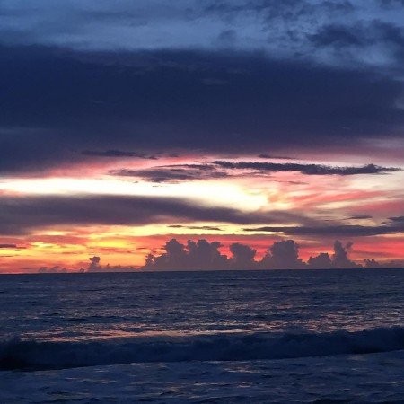 There are benefits to having the morning carpool sunrise palmbeachhellip