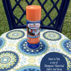 Thompson's Water Seal Fabric Seal Spray Giveaway