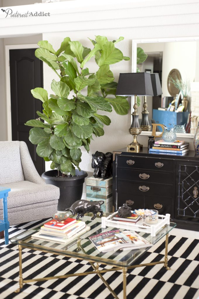 Painting the interior doors black - with a gorgeous fiddle leaf fig tree.